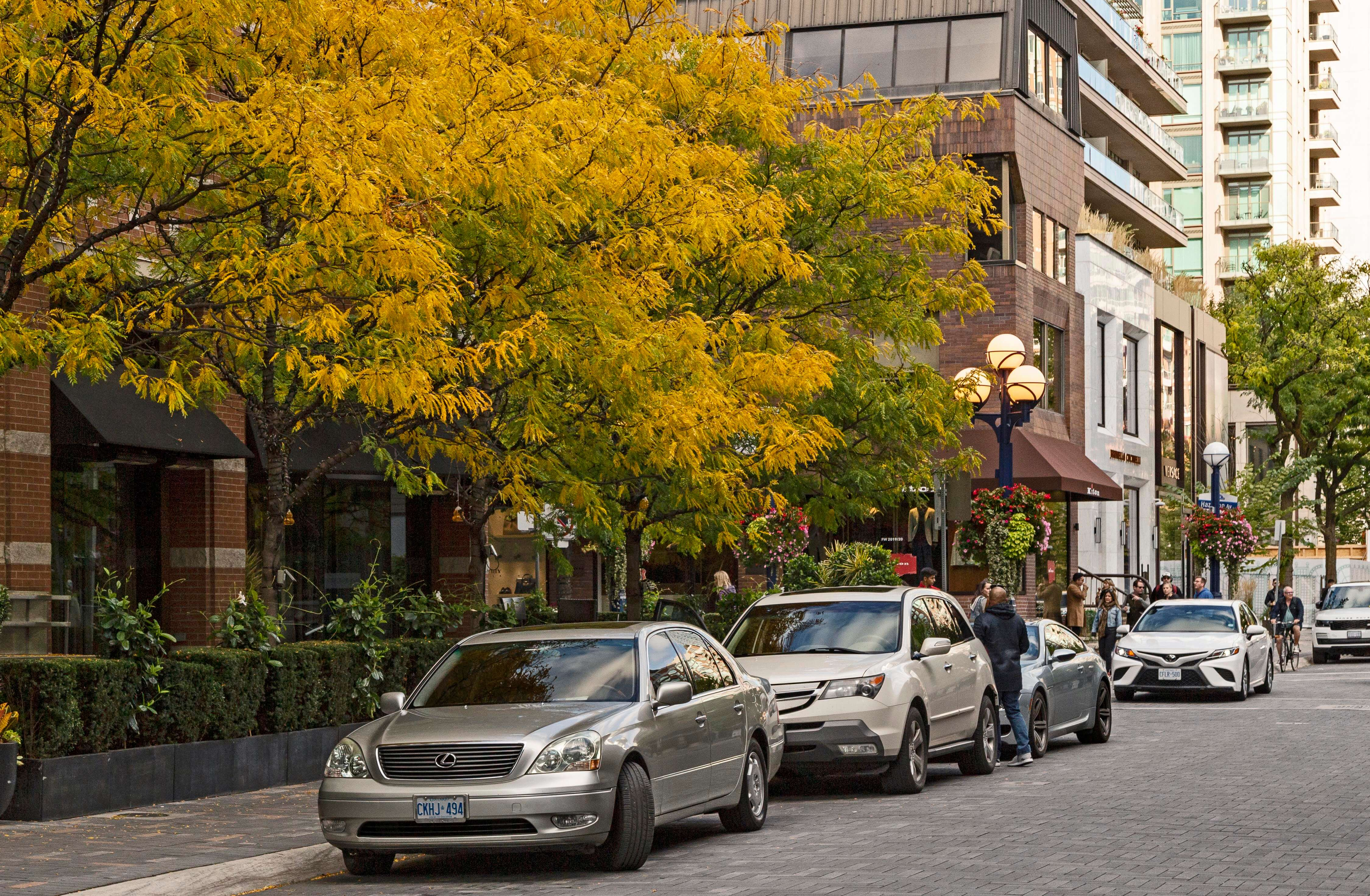 Exterior street scene with lowrise buildings, trees with yellow leaves, and cars.